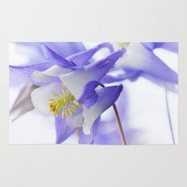 Columbine flower macro 285 Rug
