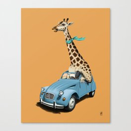 Riding High! (Colour) Canvas Print
