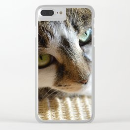 Beautiful Cat Portrait Clear iPhone Case