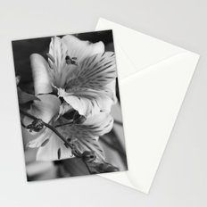 Freesia B&W Stationery Cards