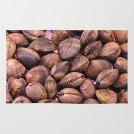 clam texture Rug