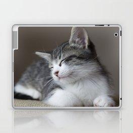 Jack - Kitten Portrait #3 (2016) Laptop & iPad Skin