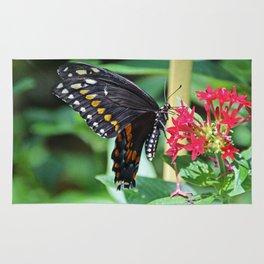 Swallowtail Sunshine Rug