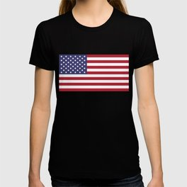 National flag of the USA - Authentic G-spec scale & colors T-shirt