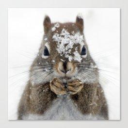 Squirrel! Canvas Print