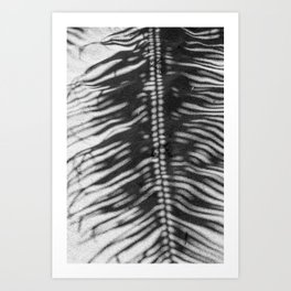 Palm Tree Shadow on Sand in Black and White Art Print
