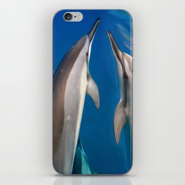 Dolphin Bubbles iPhone Skin