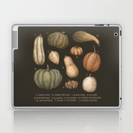 Pumpkins and Gourds Laptop & iPad Skin