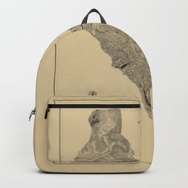 Map of West Point 1883 Backpack