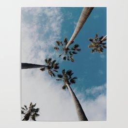 Palm Tree Summer Fun Poster