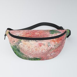 Asters Fanny Pack