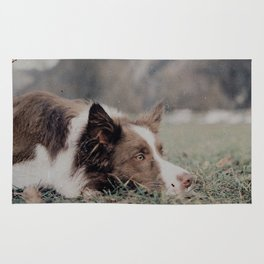 Kiva the dog Rug
