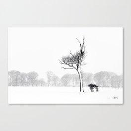 Winter Blizzard Canvas Print