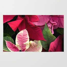 Colorful Christmas Poinsettias, Scanography Rug