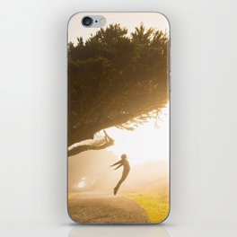 fly fly away iPhone Skin
