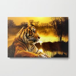 Tiger and Sunset Metal Print