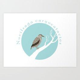 Spotted nutcracker Art Print