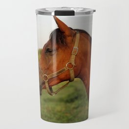 Stormy, our Arabian Travel Mug