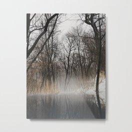 Frozen park Metal Print