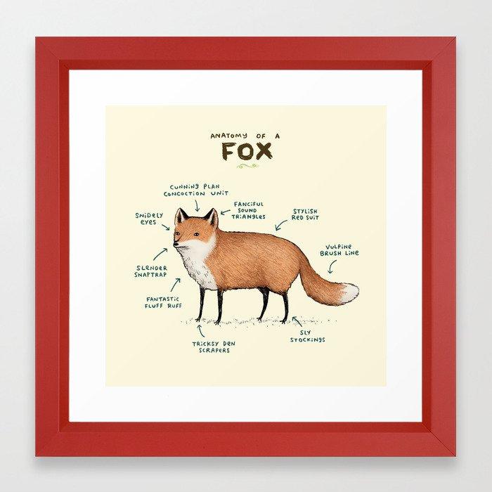 Anatomy of a Fox Framed Art Print by sophiecorrigan | Society6