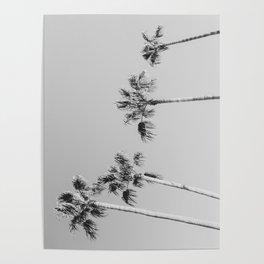 Black Palms // Monotone Gray Beach Photography Vintage Palm Tree Surfer Vibes Home Decor Poster