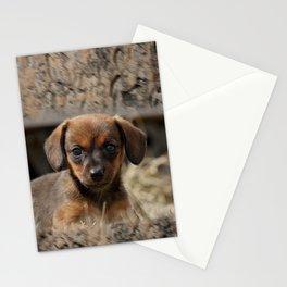 Bridgit 6 Stationery Cards