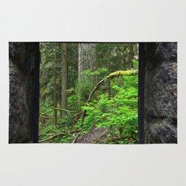 Stone House Window Rug