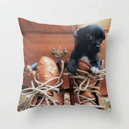 Teddy.  Throw Pillow