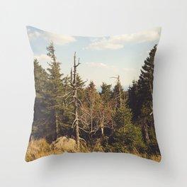 Brocken Mountain Trail Throw Pillow