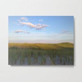 Cape Cod Sand Dunes  Metal Print