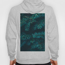 Pine Tree Close Up Neon Green Colorful Leaves Against A Black Background Hoody