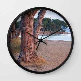 Salins Beach 8902  Wall Clock