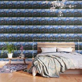 Castle Mountain Wallpaper