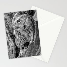 Echo the Screech Owl by Teresa Thompson Stationery Cards