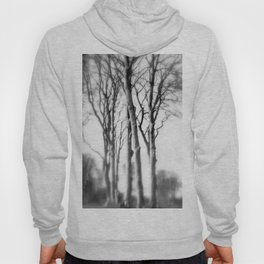 Black and White Woodland Photography Trees Forest Monochrome Home Decor Print Hoody
