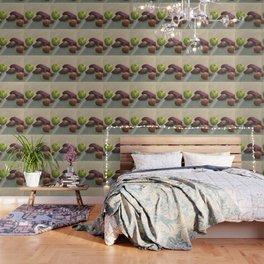 Still life, autumnal tones Wallpaper