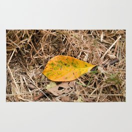 Yellow leaf on the ground Rug