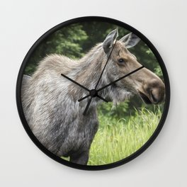 Insect Repellent Needed Wall Clock