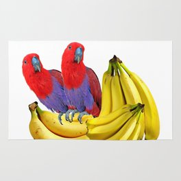 FANCY COLORED RED TROPICAL BIRDS & BANANAS Rug