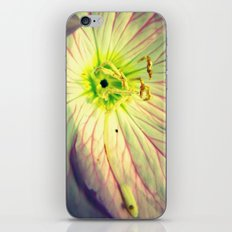 Impotent iPhone & iPod Skin