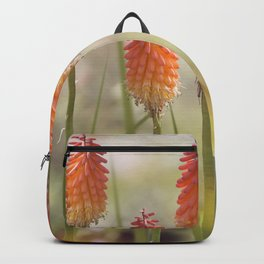 Bright orange and yellow Red Hot Poker flowers Backpack