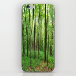 Forest 3 iPhone Skin