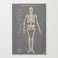 skeleton Canvas Prints featuring Skeleton by Finlay McNevin