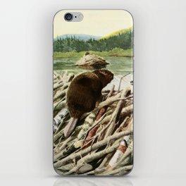 Fuertes, Louis Agassiz (1874-1927) - Burgess Animal Book 1920 (Beaver) iPhone Skin