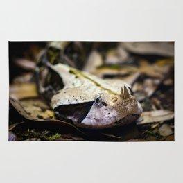 Gaboon Viper Rug