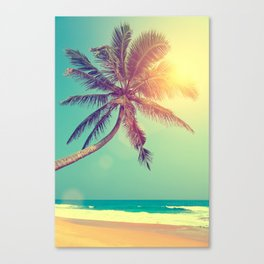 Palm Tree in Sri Lanka Canvas Print