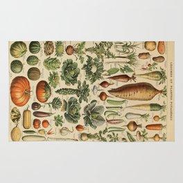 legume et plante potageres Rug