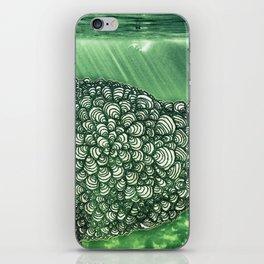 Ballena Espiral iPhone Skin