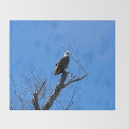 Clear Sight (Bald Eagle) Throw Blanket
