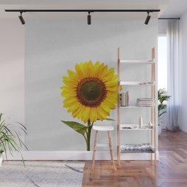 Sunflower Still Life Wall Mural